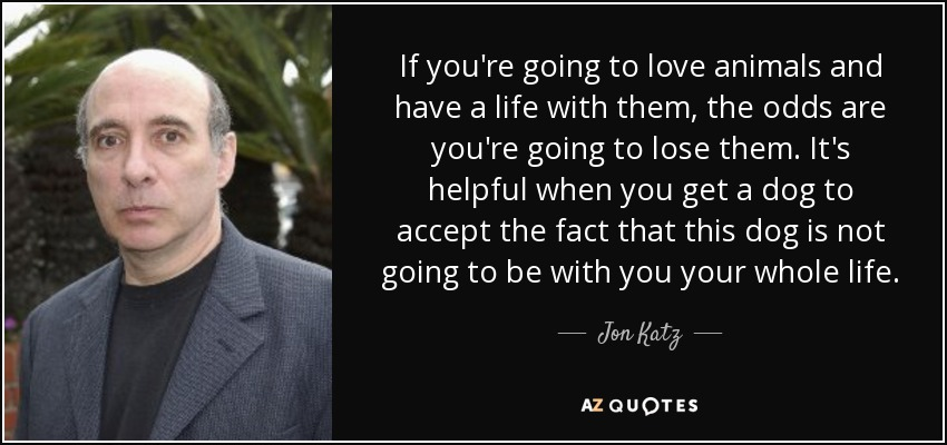 If you're going to love animals and have a life with them, the odds are you're going to lose them. It's helpful when you get a dog to accept the fact that this dog is not going to be with you your whole life. - Jon Katz