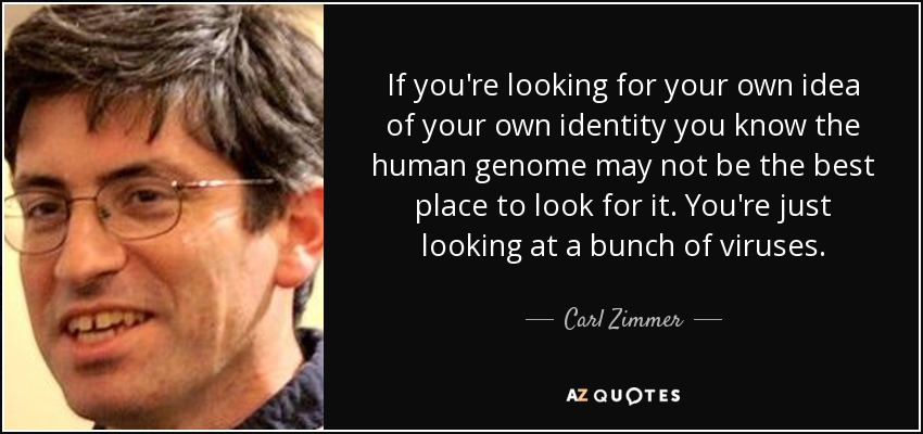 If you're looking for your own idea of your own identity you know the human genome may not be the best place to look for it. You're just looking at a bunch of viruses. - Carl Zimmer
