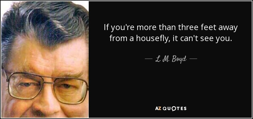 If you're more than three feet away from a housefly, it can't see you. - L. M. Boyd