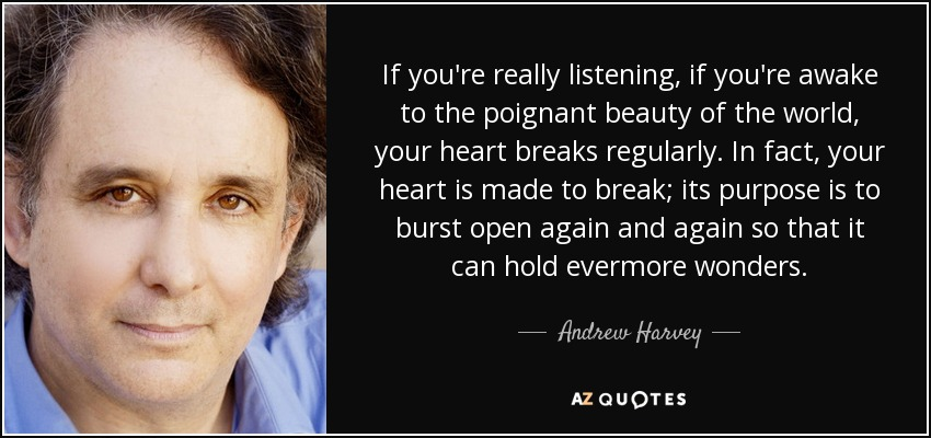 If you're really listening, if you're awake to the poignant beauty of the world, your heart breaks regularly. In fact, your heart is made to break; its purpose is to burst open again and again so that it can hold evermore wonders. - Andrew Harvey