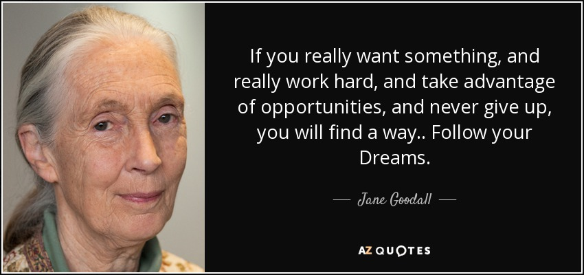 If you really want something, and really work hard, and take advantage of opportunities, and never give up, you will find a way.. Follow your Dreams. - Jane Goodall