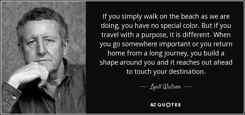 If you simply walk on the beach as we are doing, you have no special color. But if you travel with a purpose, it is different. When you go somewhere important or you return home from a long journey, you build a shape around you and it reaches out ahead to touch your destination. - Lyall Watson