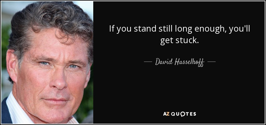 If you stand still long enough, you'll get stuck. - David Hasselhoff