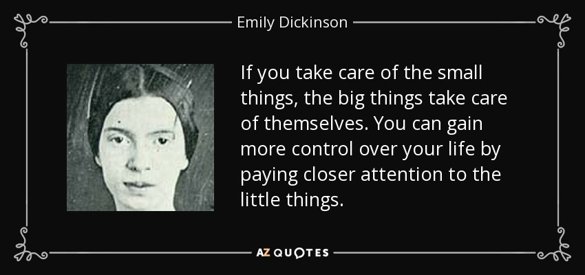 If you take care of the small things, the big things take care of themselves. You can gain more control over your life by paying closer attention to the little things. - Emily Dickinson