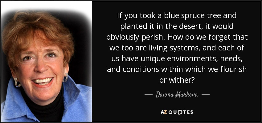 If you took a blue spruce tree and planted it in the desert, it would obviously perish. How do we forget that we too are living systems, and each of us have unique environments, needs, and conditions within which we flourish or wither? - Dawna Markova