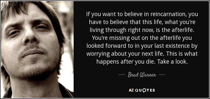 If you want to believe in reincarnation, you have to believe that this life, what you're living through right now, is the afterlife. You're missing out on the afterlife you looked forward to in your last existence by worrying about your next life. This is what happens after you die. Take a look. - Brad Warner