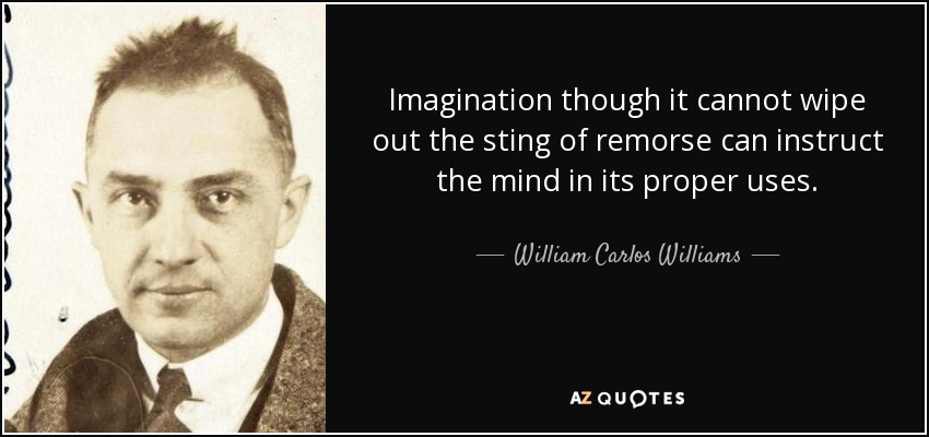 Imagination though it cannot wipe out the sting of remorse can instruct the mind in its proper uses. - William Carlos Williams
