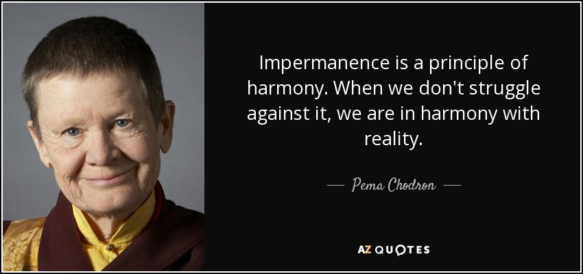 Impermanence is a principle of harmony. When we don't struggle against it, we are in harmony with reality. - Pema Chodron