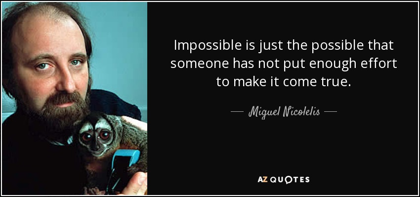Impossible is just the possible that someone has not put enough effort to make it come true. - Miguel Nicolelis