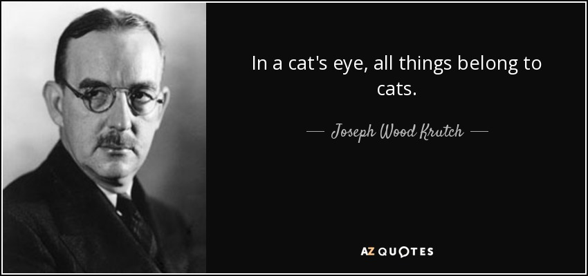 In a cat's eye, all things belong to cats. - Joseph Wood Krutch
