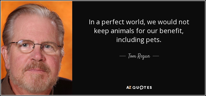 In a perfect world, we would not keep animals for our benefit, including pets. - Tom Regan