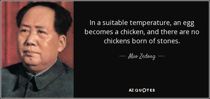 In a suitable temperature, an egg becomes a chicken, and there are no chickens born of stones. - Mao Zedong