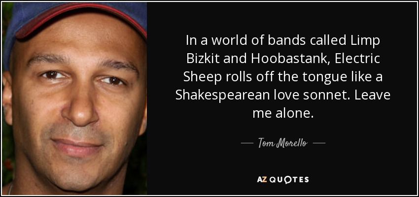 In a world of bands called Limp Bizkit and Hoobastank, Electric Sheep rolls off the tongue like a Shakespearean love sonnet. Leave me alone. - Tom Morello