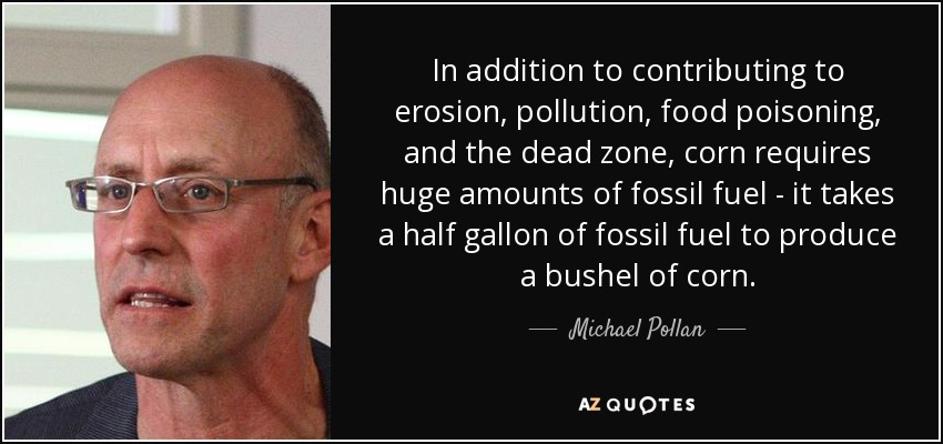 In addition to contributing to erosion, pollution, food poisoning, and the dead zone, corn requires huge amounts of fossil fuel - it takes a half gallon of fossil fuel to produce a bushel of corn. - Michael Pollan