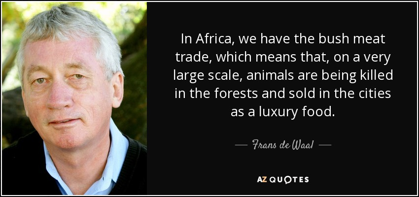 In Africa, we have the bush meat trade, which means that, on a very large scale, animals are being killed in the forests and sold in the cities as a luxury food. - Frans de Waal