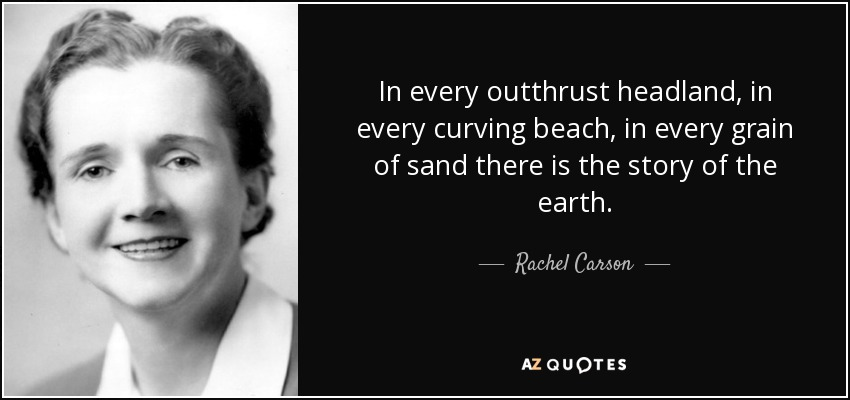 In every outthrust headland, in every curving beach, in every grain of sand there is the story of the earth. - Rachel Carson