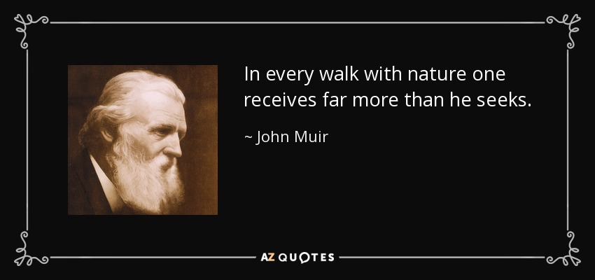 In every walk with nature one receives far more than he seeks. - John Muir