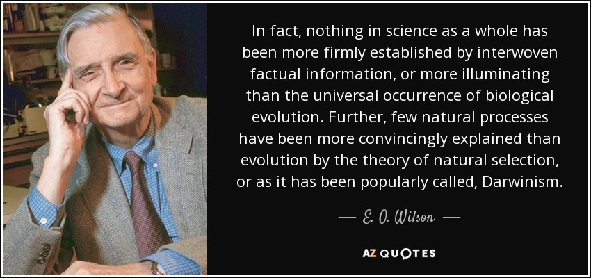 In fact, nothing in science as a whole has been more firmly established by interwoven factual information, or more illuminating than the universal occurrence of biological evolution. Further, few natural processes have been more convincingly explained than evolution by the theory of natural selection, or as it has been popularly called, Darwinism. - E. O. Wilson