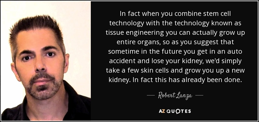 In fact when you combine stem cell technology with the technology known as tissue engineering you can actually grow up entire organs, so as you suggest that sometime in the future you get in an auto accident and lose your kidney, we'd simply take a few skin cells and grow you up a new kidney. In fact this has already been done. - Robert Lanza