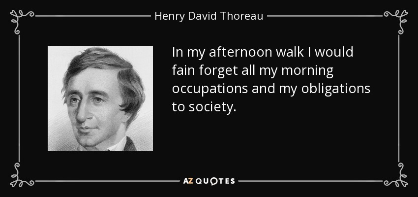 In my afternoon walk I would fain forget all my morning occupations and my obligations to society. - Henry David Thoreau