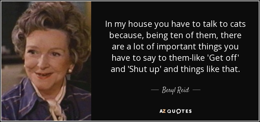 In my house you have to talk to cats because, being ten of them, there are a lot of important things you have to say to them-like 'Get off' and 'Shut up' and things like that. - Beryl Reid