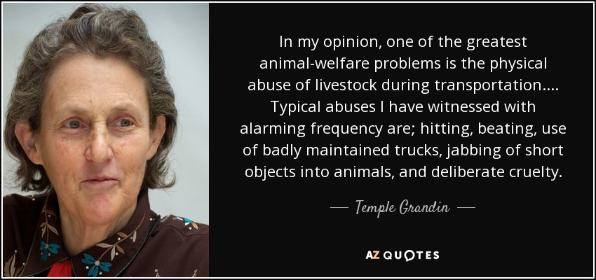 In my opinion, one of the greatest animal-welfare problems is the physical abuse of livestock during transportation.... Typical abuses I have witnessed with alarming frequency are; hitting, beating, use of badly maintained trucks, jabbing of short objects into animals, and deliberate cruelty. - Temple Grandin