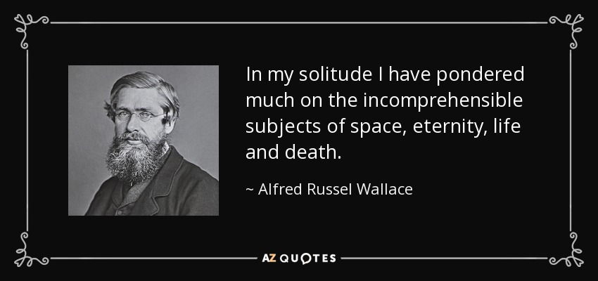 In my solitude I have pondered much on the incomprehensible subjects of space, eternity, life and death. - Alfred Russel Wallace