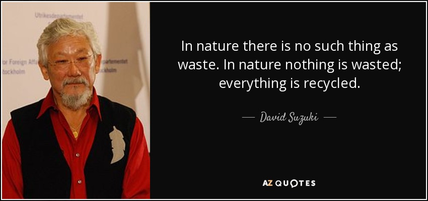 In nature there is no such thing as waste. In nature nothing is wasted; everything is recycled. - David Suzuki