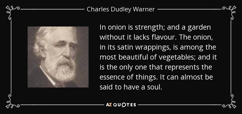 In onion is strength; and a garden without it lacks flavour. The onion, in its satin wrappings, is among the most beautiful of vegetables; and it is the only one that represents the essence of things. It can almost be said to have a soul. - Charles Dudley Warner