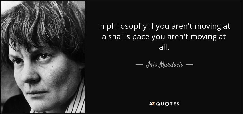 In philosophy if you aren't moving at a snail's pace you aren't moving at all. - Iris Murdoch