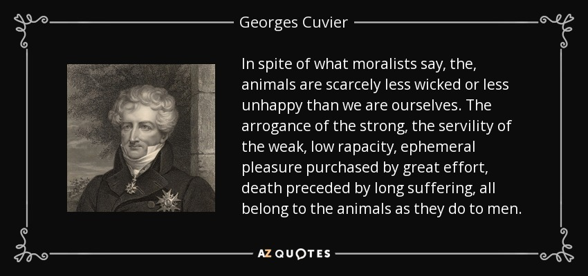 In spite of what moralists say, the, animals are scarcely less wicked or less unhappy than we are ourselves. The arrogance of the strong, the servility of the weak, low rapacity, ephemeral pleasure purchased by great effort, death preceded by long suffering, all belong to the animals as they do to men. - Georges Cuvier