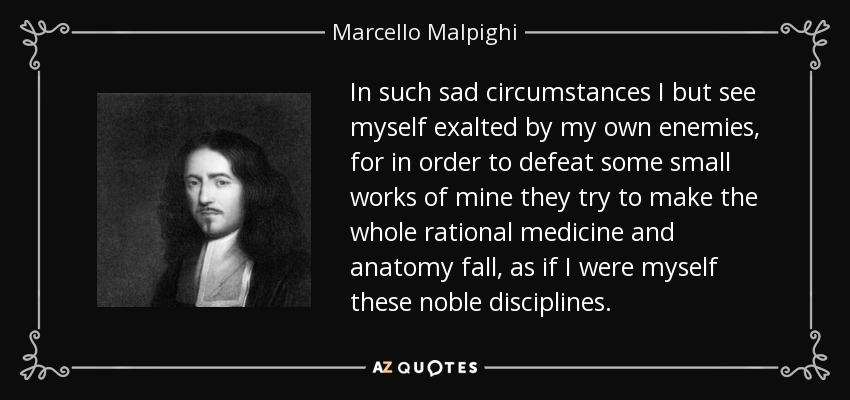 In such sad circumstances I but see myself exalted by my own enemies, for in order to defeat some small works of mine they try to make the whole rational medicine and anatomy fall, as if I were myself these noble disciplines. - Marcello Malpighi