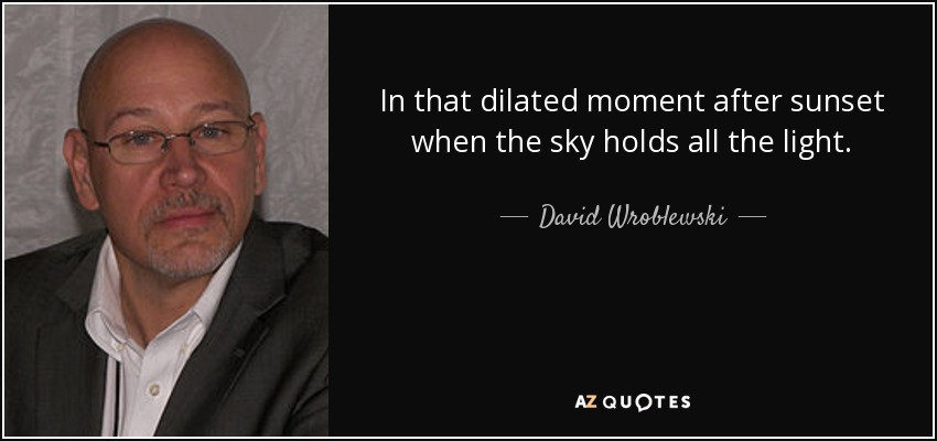 In that dilated moment after sunset when the sky holds all the light. - David Wroblewski