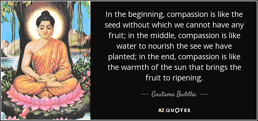 In the beginning, compassion is like the seed without which we cannot have any fruit; in the middle, compassion is like water to nourish the see we have planted; in the end, compassion is like the warmth of the sun that brings the fruit to ripening. - Gautama Buddha