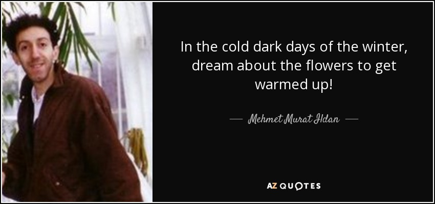 Mehmet Murat Ildan quote: In the cold dark days of the winter
