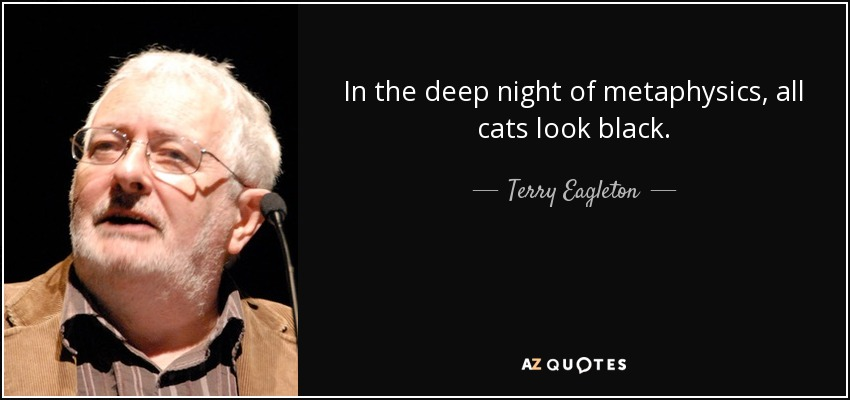 In the deep night of metaphysics, all cats look black. - Terry Eagleton