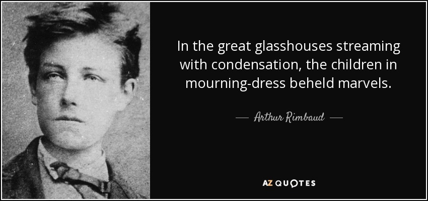 In the great glasshouses streaming with condensation, the children in mourning-dress beheld marvels. - Arthur Rimbaud