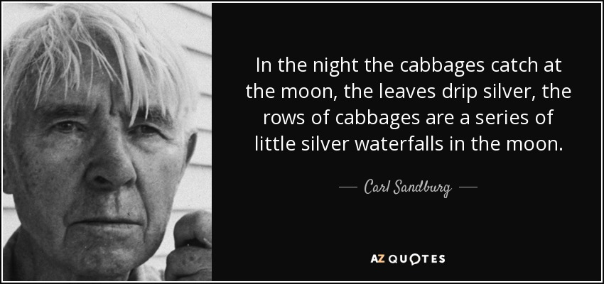 In the night the cabbages catch at the moon, the leaves drip silver, the rows of cabbages are a series of little silver waterfalls in the moon. - Carl Sandburg