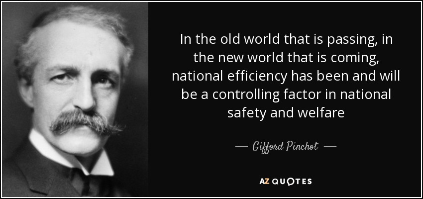 In the old world that is passing, in the new world that is coming, national efficiency has been and will be a controlling factor in national safety and welfare - Gifford Pinchot