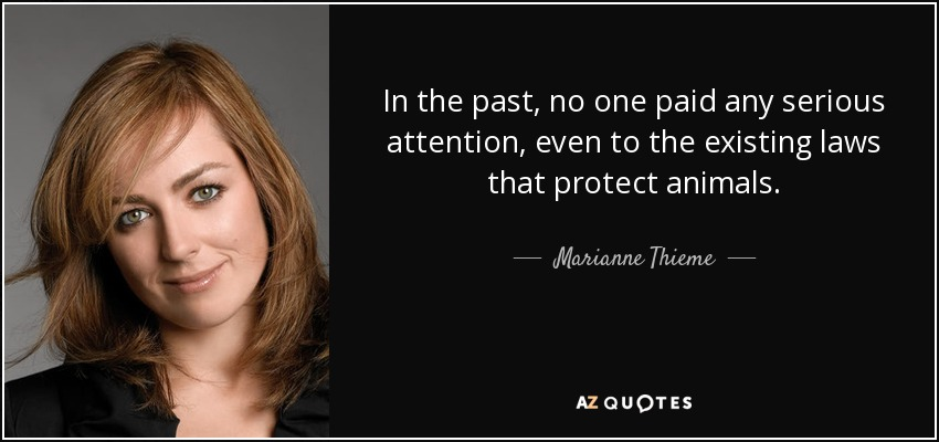 In the past, no one paid any serious attention, even to the existing laws that protect animals. - Marianne Thieme