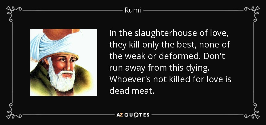 In the slaughterhouse of love, they kill only the best, none of the weak or deformed. Don't run away from this dying. Whoever's not killed for love is dead meat. - Rumi