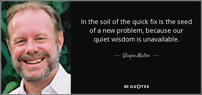 In the soil of the quick fix is the seed of a new problem, because our quiet wisdom is unavailable. - Wayne Muller