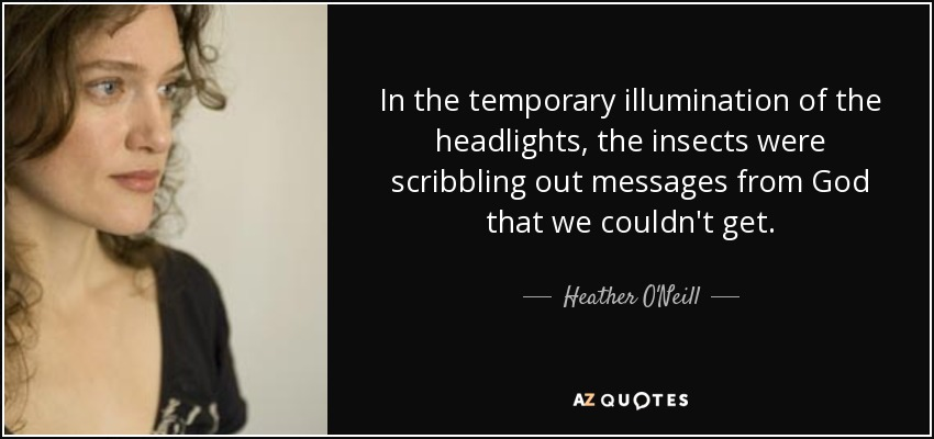 In the temporary illumination of the headlights, the insects were scribbling out messages from God that we couldn't get. - Heather O'Neill