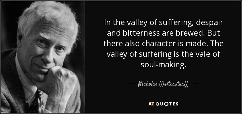 In the valley of suffering, despair and bitterness are brewed. But there also character is made. The valley of suffering is the vale of soul-making. - Nicholas Wolterstorff