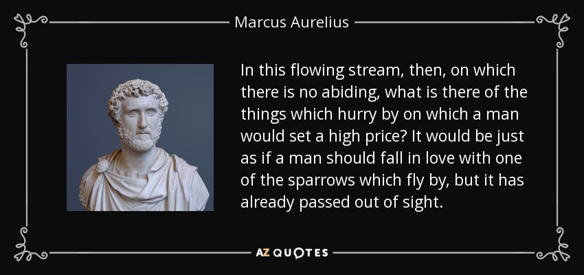 In this flowing stream, then, on which there is no abiding, what is there of the things which hurry by on which a man would set a high price? It would be just as if a man should fall in love with one of the sparrows which fly by, but it has already passed out of sight. - Marcus Aurelius