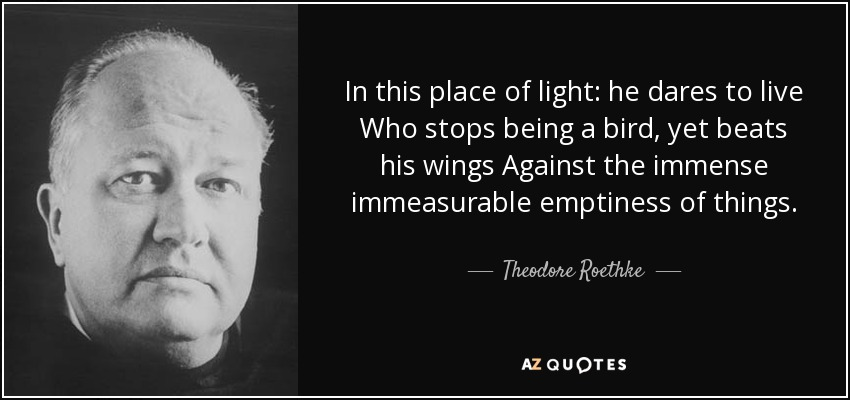 In this place of light: he dares to live Who stops being a bird, yet beats his wings Against the immense immeasurable emptiness of things. - Theodore Roethke