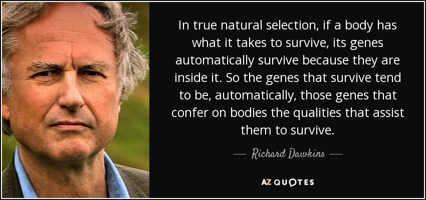 In true natural selection, if a body has what it takes to survive, its genes automatically survive because they are inside it. So the genes that survive tend to be, automatically, those genes that confer on bodies the qualities that assist them to survive. - Richard Dawkins