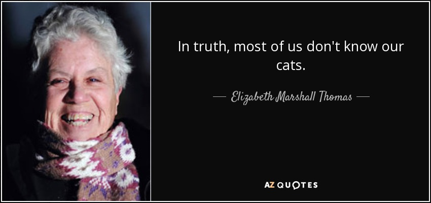 In truth, most of us don't know our cats. - Elizabeth Marshall Thomas
