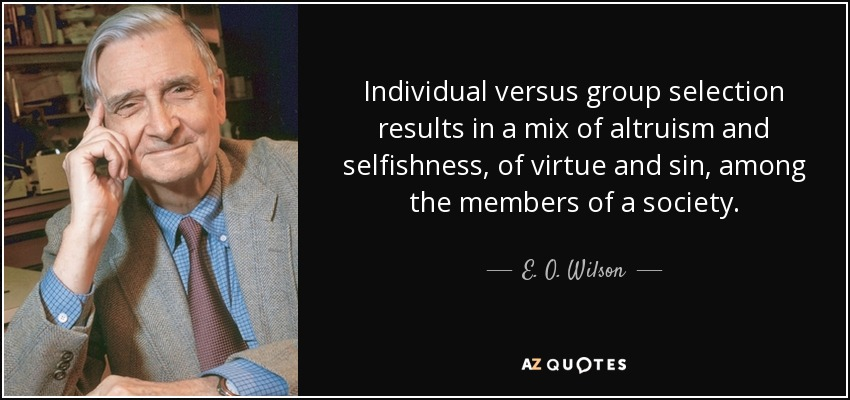 Individual versus group selection results in a mix of altruism and selfishness, of virtue and sin, among the members of a society. - E. O. Wilson