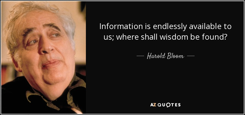 Information is endlessly available to us; where shall wisdom be found? - Harold Bloom